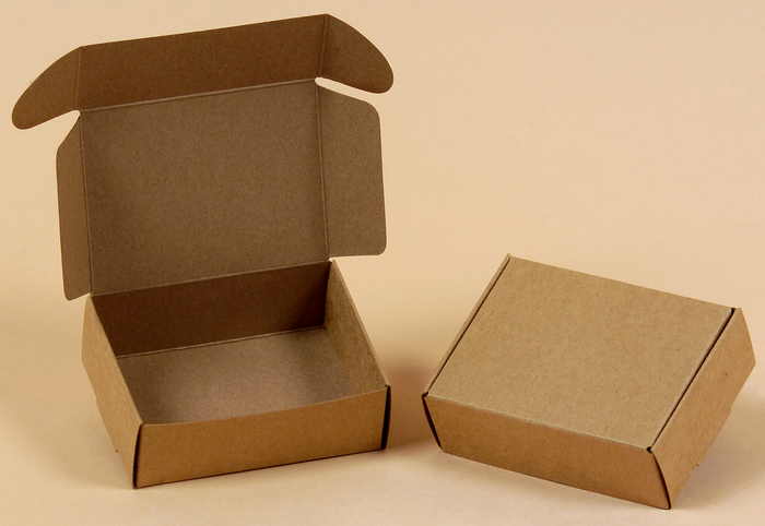 Tyrimų saugumui – transportavimo dėžutės
